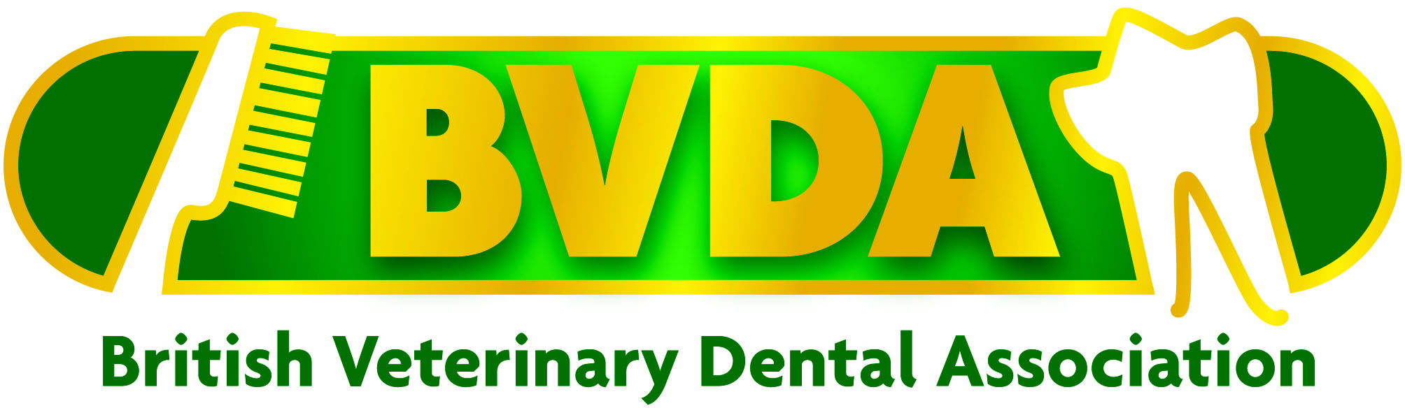 BVDA logo new colour copy - Copy